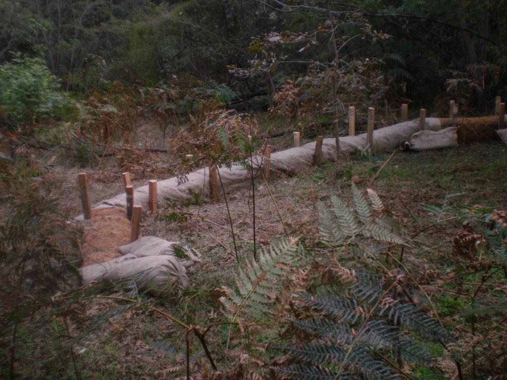 Coir Log work at Jackson Park