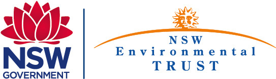 Logo Enviro Volunteer